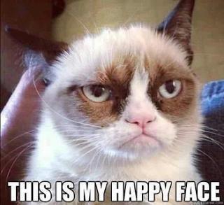 425798912_grumpy_cat_xlarge